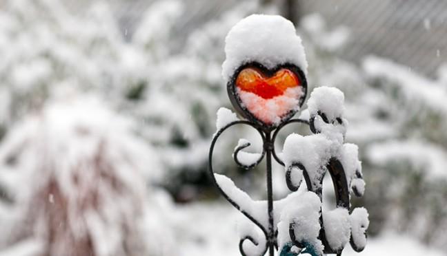 Wie wird der Garten winterfest?