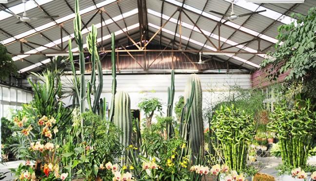 Wintergärten im Garten