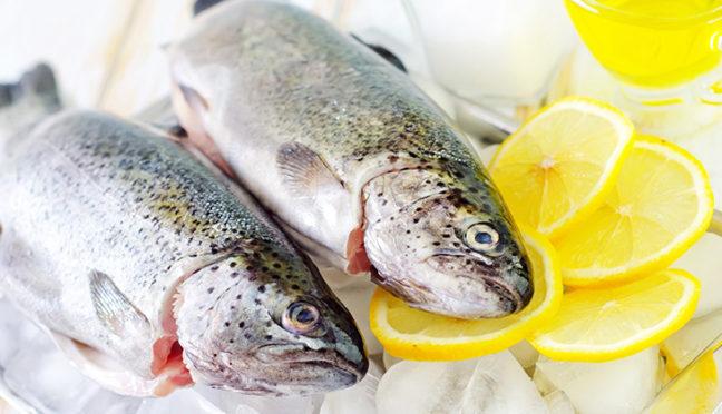 Kühlgeräte – damit Lebensmittel lange frisch bleiben