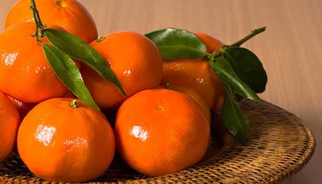 clementinen mandarinen satsumas unterschiede der zitrusfr chte. Black Bedroom Furniture Sets. Home Design Ideas