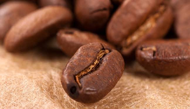 Entkoffeinierter Kaffee – ein Genuss aus ganzen Bohnen