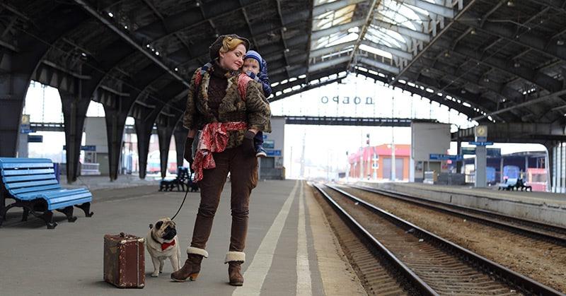 Bahnreisen mit dem Hund - das ist zu beachten